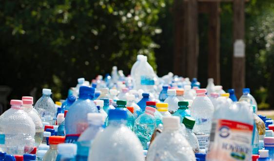 菲律宾回收2万废塑料瓶打造郁金香花园