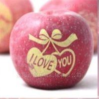 丹东苹果表面印字机 昌图艺术苹果印刷机